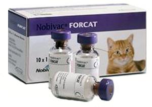 НОБИВАК ФОРКЭТ (Nobivaс Forcat)
